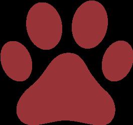 petsupplies_icon_pawprint